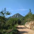 2008年10月2日河平連山555.2m